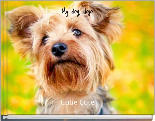 My dog Jojo
