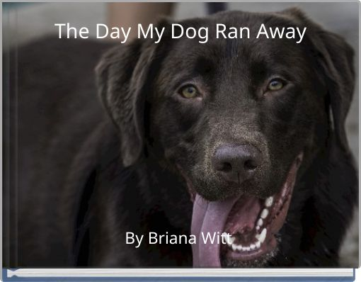 The Day My Dog Ran Away