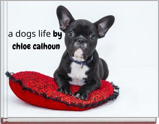 a dogs life     by chloe calhoun