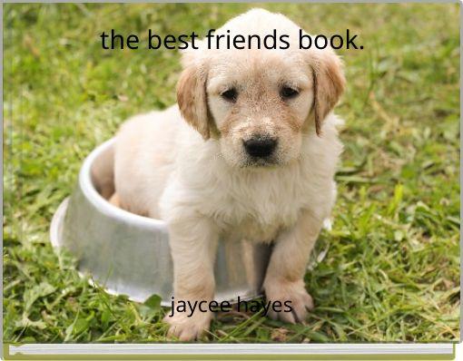 the best friends book.