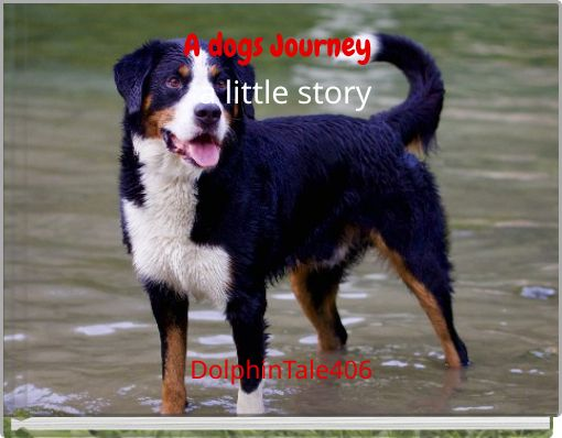 A dogs Journey              a little story