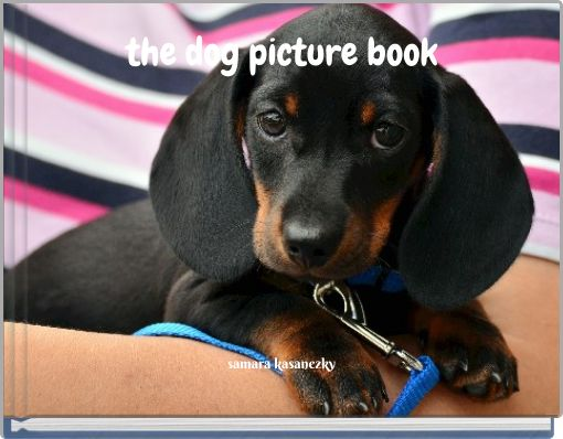 the dog picture book