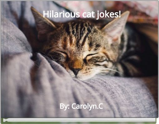 Hilarious cat jokes!