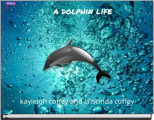 a dolphin life