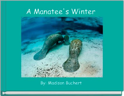 A Manatee's Winter