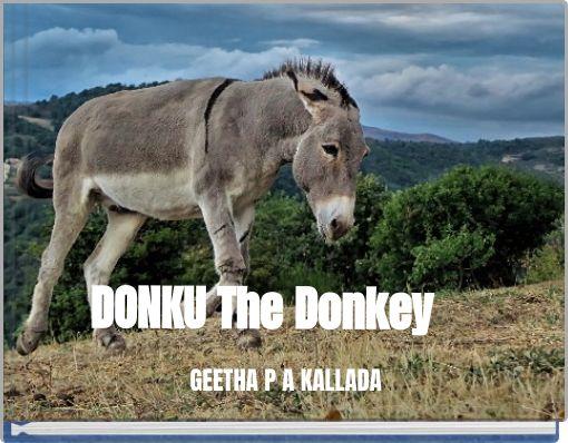 DONKU The Donkey