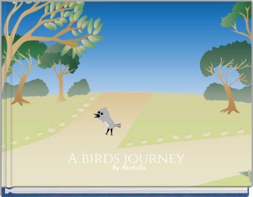 A birds journey