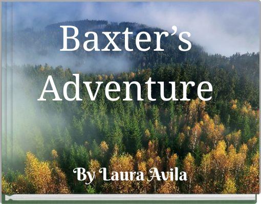 Baxter's Adventure