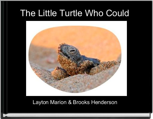 The Little Turtle Who Could