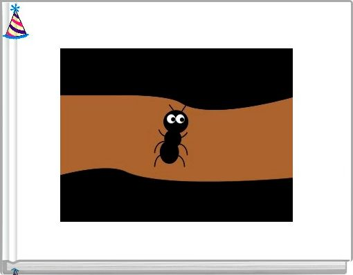 The Life Cycle of an Insect