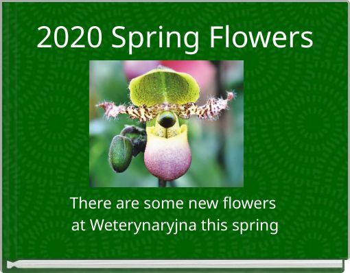 2020 Spring Flowers