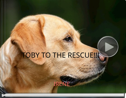 Book titled 'TOBY TO THE RESCUE!!!'
