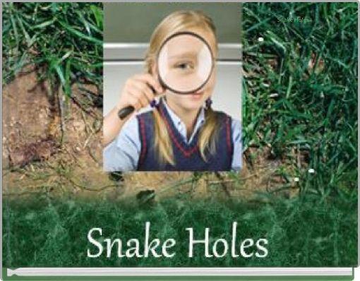 Snake Holes