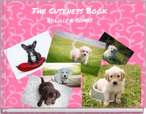 The Cuteness BookBy Lilly R Combs