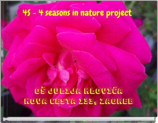 4S- 4 seasons in nature project