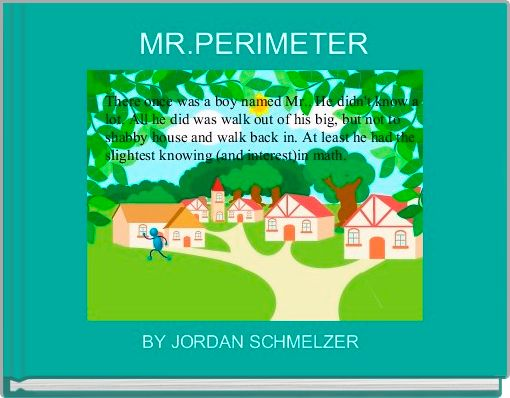 MR.PERIMETER