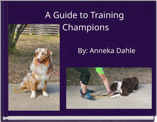 A Guide to Training Champions