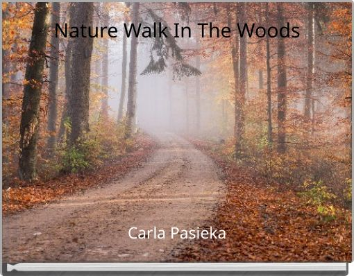 Nature Walk In The Woods
