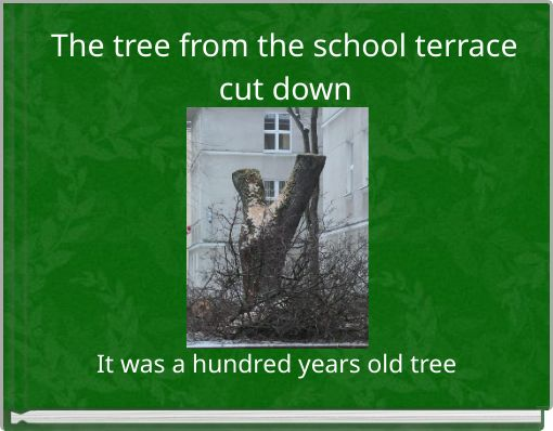 The tree from the school terrace cut down